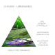 Claus porto soap bar Chicken-Lemongrass 50 gram